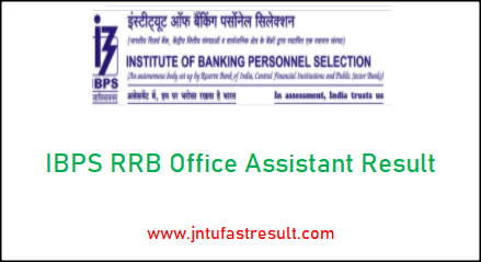 ibps-rrb-office-assistant-result