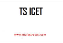 ts-icet